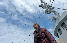 Surrounded by birds at St Kilda on Hebrides Cruises: Chris Gomersall